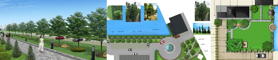 เรียน landscape design-เรียน garden design-ออกแบบภูมิทัศน์-ออกแบบภายนอก-เรียนจัดสวน Cover